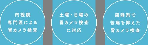胃カメラ検査(胃内視鏡)